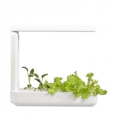 VegeBox Kitchen - Jardin Hydroponique d'Intérieur